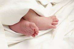 Pies recién nacidos del bebé Fotografía de archivo libre de regalías