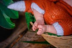 Pies recién nacidos del bebé Imagen de archivo libre de regalías