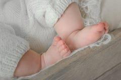 Pies recién nacidos del bebé Foto de archivo libre de regalías