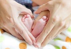 Pies recién nacidos del bebé en las manos de la mamá y del papá Fotografía de archivo libre de regalías