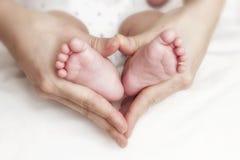 Pies recién nacidos del bebé en las manos de la madre Fotos de archivo libres de regalías