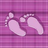 Pies rosados con la sombra en fondo de la guinga Fotos de archivo libres de regalías