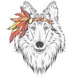 Pies w Indiańskim opatrunku z piórkami Lider plemię Wektorowa ilustracja dla kartka z pozdrowieniami, plakatów lub druków, dalej ilustracja wektor