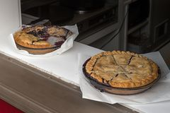 Pies in the Window Royalty Free Stock Photo