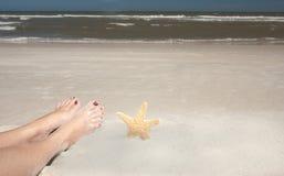 Pies y estrellas de mar Imagenes de archivo