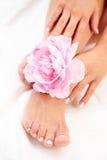 Pies y manos hermosos Foto de archivo libre de regalías