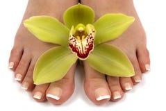 Pies y orquídea Imágenes de archivo libres de regalías