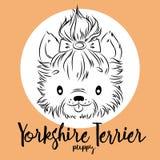 Pies, Yorkshire Terrier szczeniaka głowa odizolowywająca i inskrypcja, Wektorowa ilustracja, projekta element dla kart, sztandary royalty ilustracja