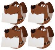 Pies z znakiem Fotografia Royalty Free