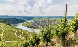 Piesport on the Moselle Rhineland-Palatinate Germany.  royalty free stock photography