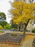 Piestany, Slovakia- Autumn Day in empty City Park auditorium . Royalty Free Stock Image