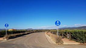 Pieszy i rowerowy drogowy podpisujemy wewnątrz kraju Fotografia Royalty Free