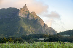 Pieter Both Mountain Mauritius Photographie stock