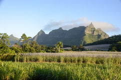 Pieter Both Mountain Mauritius Image libre de droits