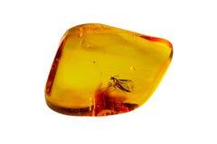 Pietra ambrata baltica Fotografie Stock
