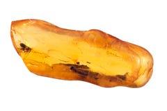 Pietra ambrata baltica Fotografia Stock Libera da Diritti
