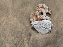 Pietra bianca e scura vicino ad una conchiglia bianca sulla sabbia bagnata delicata Fotografia Stock