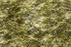 Pietra con il fondo di struttura del lichene 3D Immagini Stock