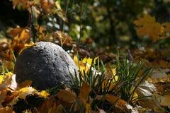 pietra del prato inglese di autunno Immagine Stock