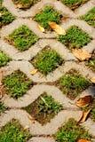 Pietra del tappeto erboso Immagine Stock
