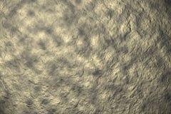 Pietra dell'oro Immagine Stock