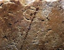 Pietra della parete del castello Fotografia Stock