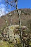 Pietra di Bowder, Borrowdale, Cumbria, Inghilterra Fotografia Stock