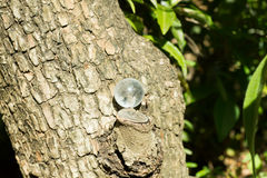 Pietra di cristallo in all'aperto verde Fotografie Stock