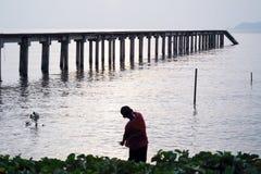 Pietra di lancio del bambino da innaffiare alla spiaggia Fotografia Stock Libera da Diritti