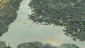 Pietra di lancio nell'acqua della laguna del petrolio il precedente rifiuto tossico dello scarico a Ostrava, laguna dell'olio, na archivi video
