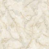 Pietra di marmo naturale Immagine Stock