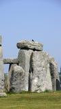 Pietra di Stonehenge con l'uccello fotografia stock libera da diritti