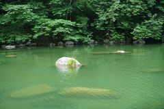 Pietra e fiume Immagine Stock