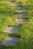pietra facente un passo del percorso dell'erba immagini stock libere da diritti