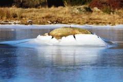 Pietra in ghiaccio immagine stock