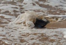 Pietra nella sabbia ed in un'onda Immagine Stock Libera da Diritti