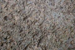 Pietra, roccia Immagine Stock Libera da Diritti