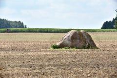 Pietra sacrificale vicino a Pustow in Meclemburgo-Pomerania, Germania Fotografia Stock Libera da Diritti