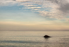 Pietra sola nel lago Fotografia Stock Libera da Diritti