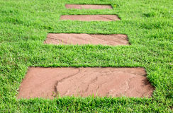 Pietra su erba, modo della passeggiata Fotografia Stock Libera da Diritti