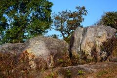 Pietra sulla montagna di Phu Rua Fotografia Stock