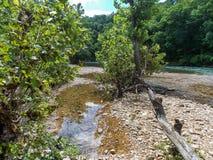 Pietraia sul fiume White fotografia stock libera da diritti