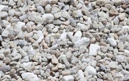 Pietre bianche sulla terra fotografia stock