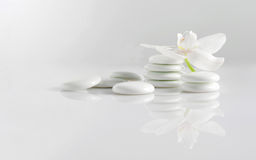 Pietre con l'orchidea Immagini Stock Libere da Diritti