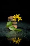 Pietre d'equilibratura di zen sul nero con il fiore giallo Fotografie Stock Libere da Diritti