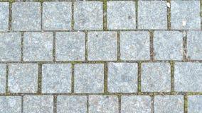 Pietre dei marciapiedi, pietre del ponte nel parco di autunno immagini stock