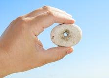 Pietre del ` di Lucky Stones con i fori naturali Immagine Stock Libera da Diritti