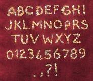 Pietre del mare di alfabeto Immagine Stock