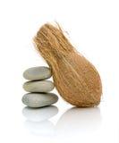 Pietre del mare e della noce di cocco su una priorità bassa bianca Fotografia Stock Libera da Diritti