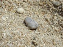 Pietre del mare e della sabbia fotografia stock